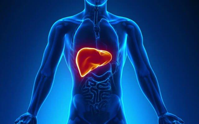 Resultado de imagem para hepatites