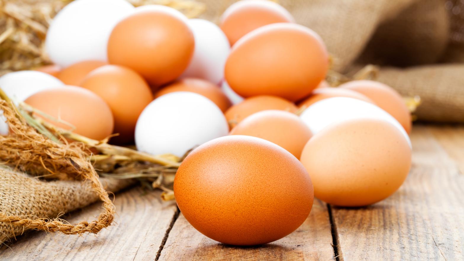 Tipos de ovo