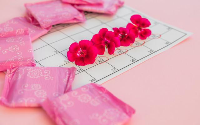 Calendário com flores em cima simbolizando os dias de ciclo menstrual, ao redor absorventes.