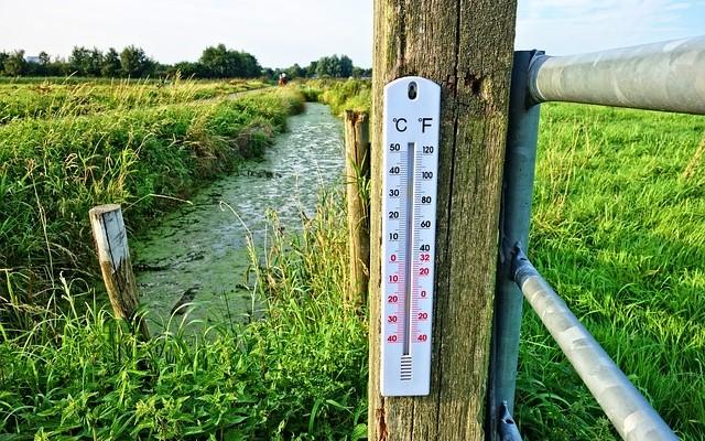Paisagem verde de campo, com um termômetro de ambiente fixado em uma cerca.