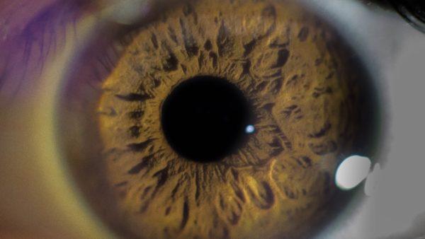 Olho humano.