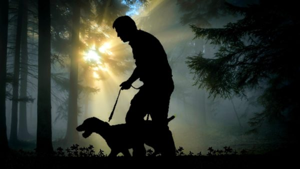 Homem passeando com seu cão-guia na floresta.