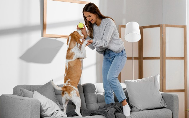 Mulher brincando com cão.
